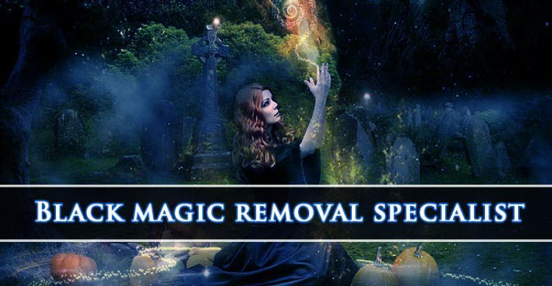 Black Magic Removal Specialist Astrologer Pandit N K Sharma +91-9582627501